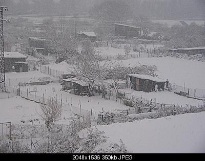 AMARCORD: nevicata 28 novembre 2008-neve-28-novembre-2008-001.jpg