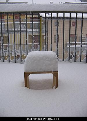 AMARCORD: nevicata 28 novembre 2008-neve-28-novembre-2008-002.jpg