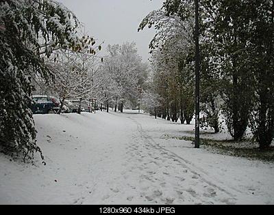 AMARCORD: nevicata 28 novembre 2008-pict0006.jpg