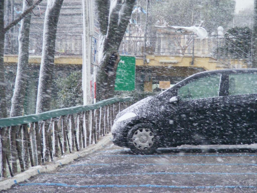 Foto della nevicata del 31-01-2010 Paolo61 con la collaborazione di Niko e Andrew183-dscf0782_1024x768.jpg