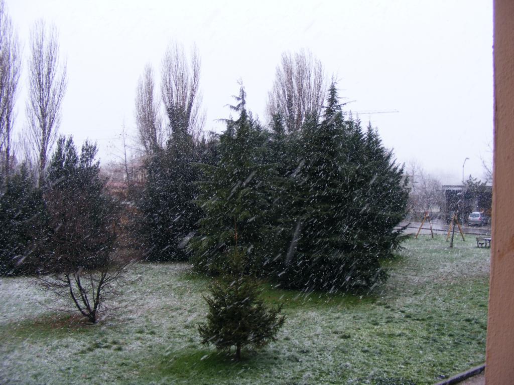 Foto della nevicata del 31-01-2010 Paolo61 con la collaborazione di Niko e Andrew183-dscf0784_1024x768.jpg