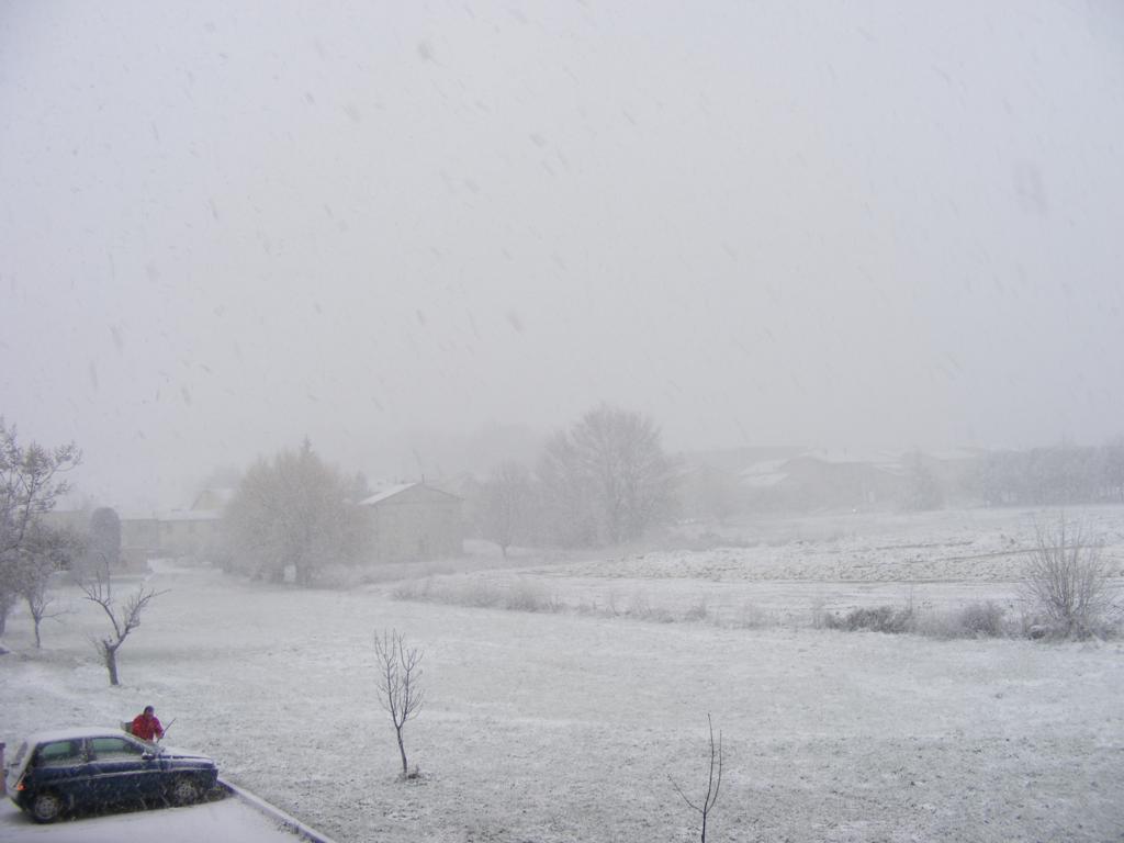 Foto della nevicata del 31-01-2010 Paolo61 con la collaborazione di Niko e Andrew183-dscf0806_1024x768.jpg