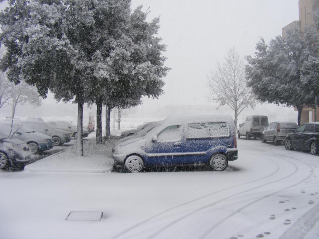 Foto della nevicata del 31-01-2010 Paolo61 con la collaborazione di Niko e Andrew183-dscf0815_1024x768.jpg