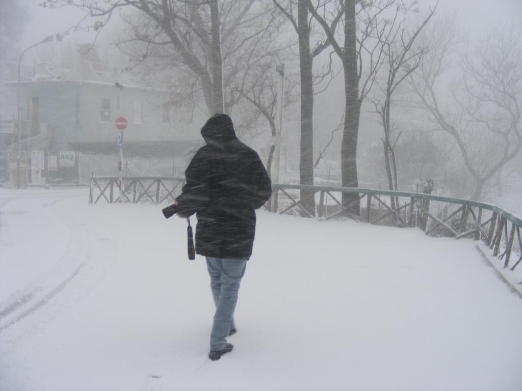 Foto della nevicata del 31-01-2010 Paolo61 con la collaborazione di Niko e Andrew183-dscf0819_1024x768.jpg