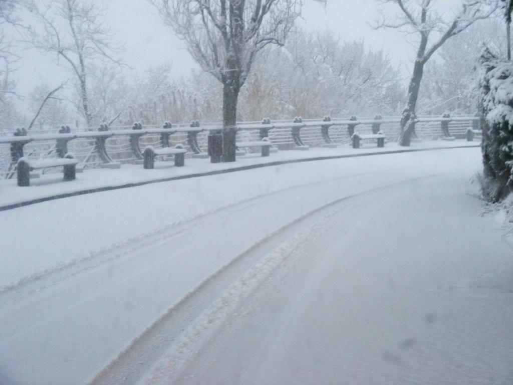 Foto della nevicata del 31-01-2010 Paolo61 con la collaborazione di Niko e Andrew183-dscf0826_1024x768.jpg
