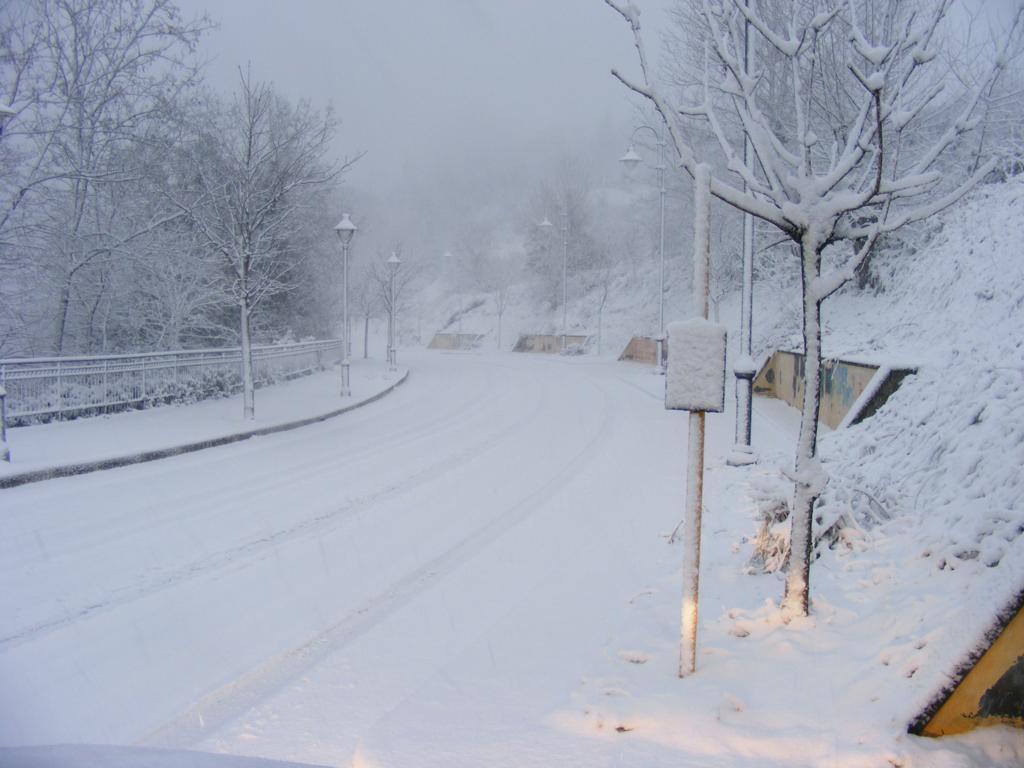Foto della nevicata del 31-01-2010 Paolo61 con la collaborazione di Niko e Andrew183-dscf0831_1024x768.jpg