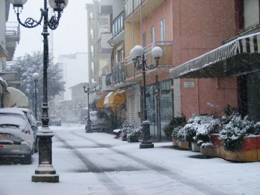 Foto della nevicata del 31-01-2010 Paolo61 con la collaborazione di Niko e Andrew183-dscf0840_1024x768.jpg
