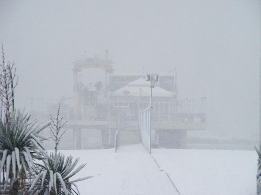 Foto della nevicata del 31-01-2010 Paolo61 con la collaborazione di Niko e Andrew183-dscf0842_1024x768.jpg