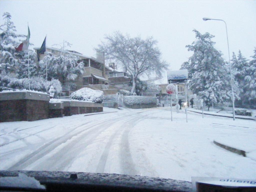 Foto della nevicata del 31-01-2010 Paolo61 con la collaborazione di Niko e Andrew183-dscf0895_1024x768.jpg