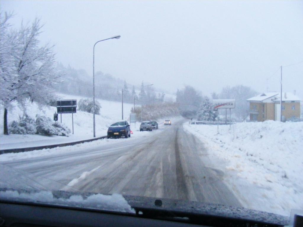 Foto della nevicata del 31-01-2010 Paolo61 con la collaborazione di Niko e Andrew183-dscf0901_1024x768.jpg