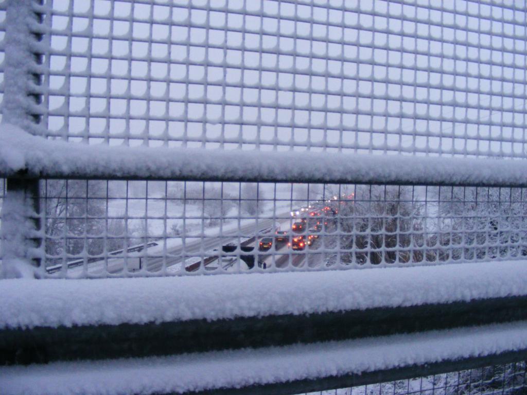 Foto della nevicata del 31-01-2010 Paolo61 con la collaborazione di Niko e Andrew183-dscf0906_1024x768.jpg