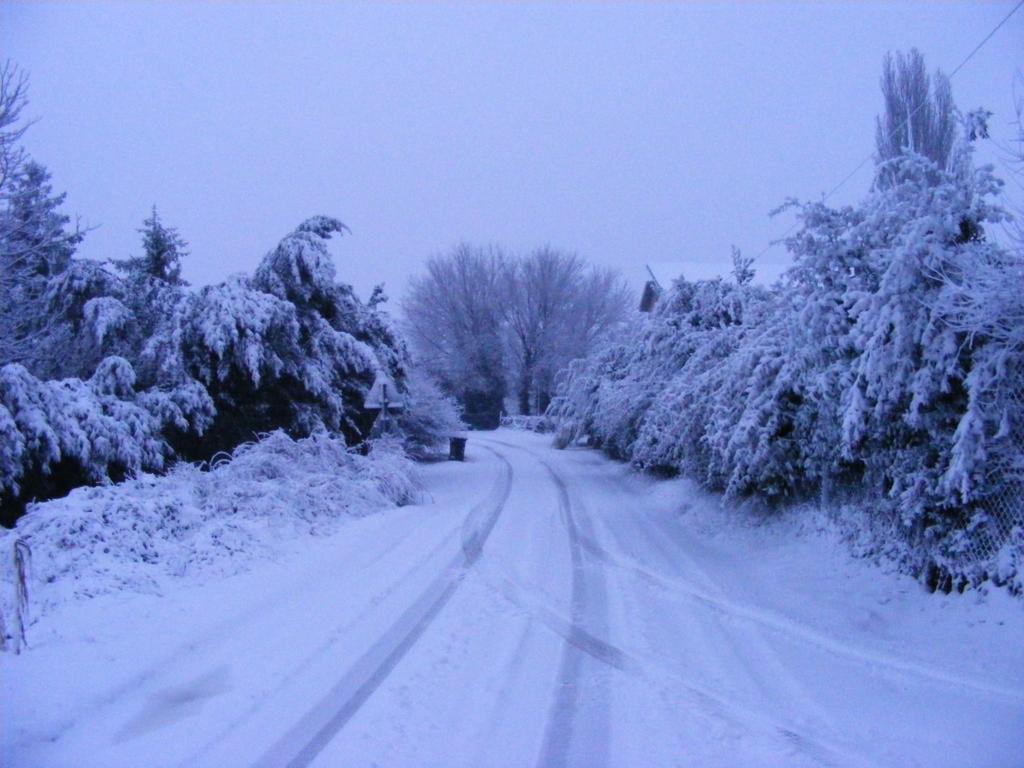 Foto della nevicata del 31-01-2010 Paolo61 con la collaborazione di Niko e Andrew183-dscf0915_1024x768.jpg