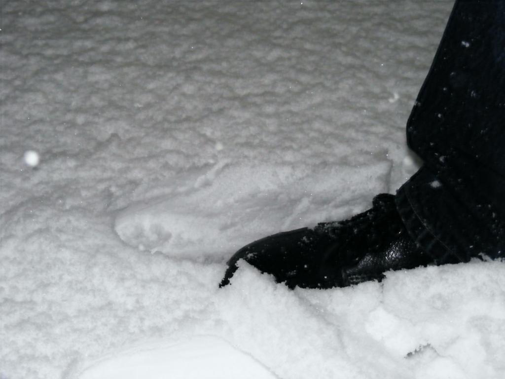 Foto della nevicata del 31-01-2010 Paolo61 con la collaborazione di Niko e Andrew183-dscf0953_1024x768.jpg
