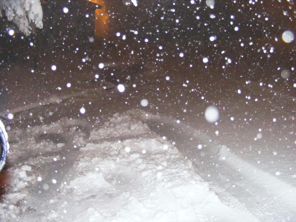 Foto della nevicata del 31-01-2010 Paolo61 con la collaborazione di Niko e Andrew183-dscf0975_1024x768.jpg