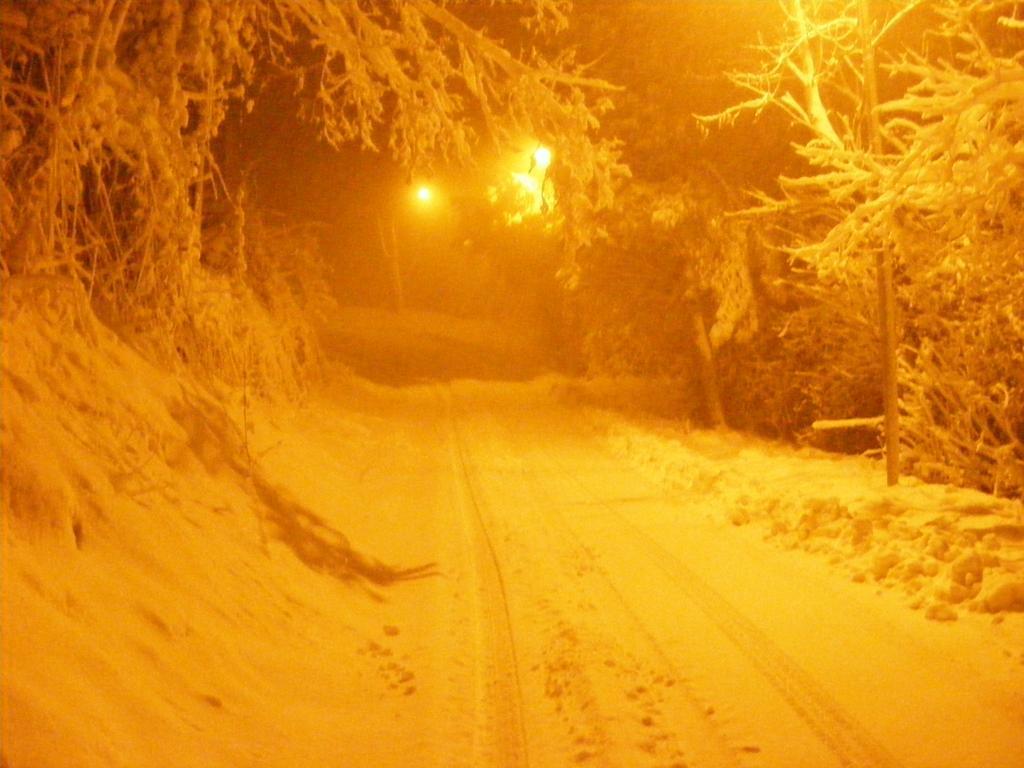 Foto della nevicata del 31-01-2010 Paolo61 con la collaborazione di Niko e Andrew183-dscf0983_1024x768.jpg
