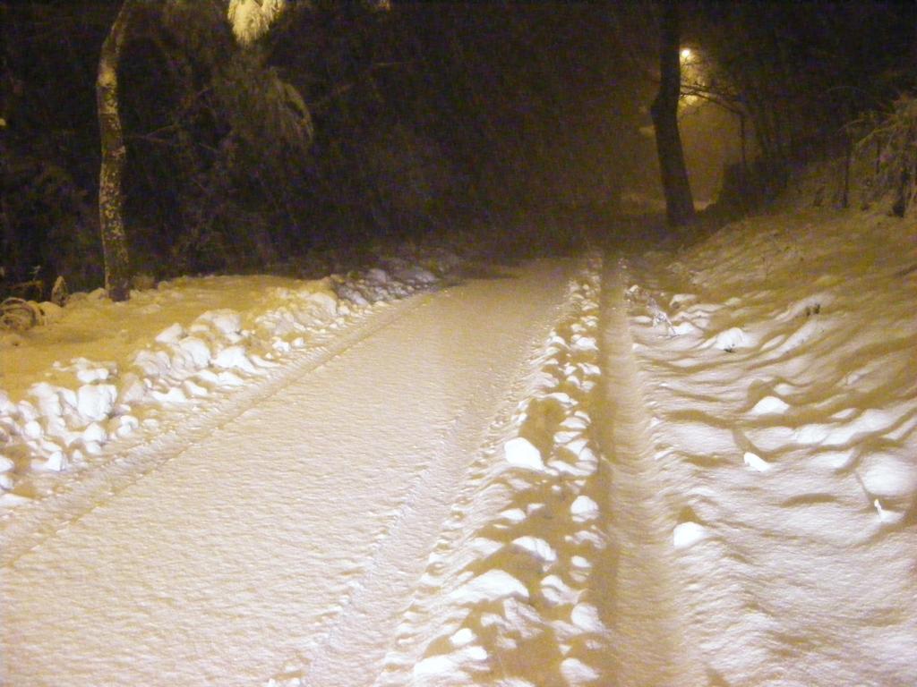 Foto della nevicata del 31-01-2010 Paolo61 con la collaborazione di Niko e Andrew183-dscf0985_1024x768.jpg