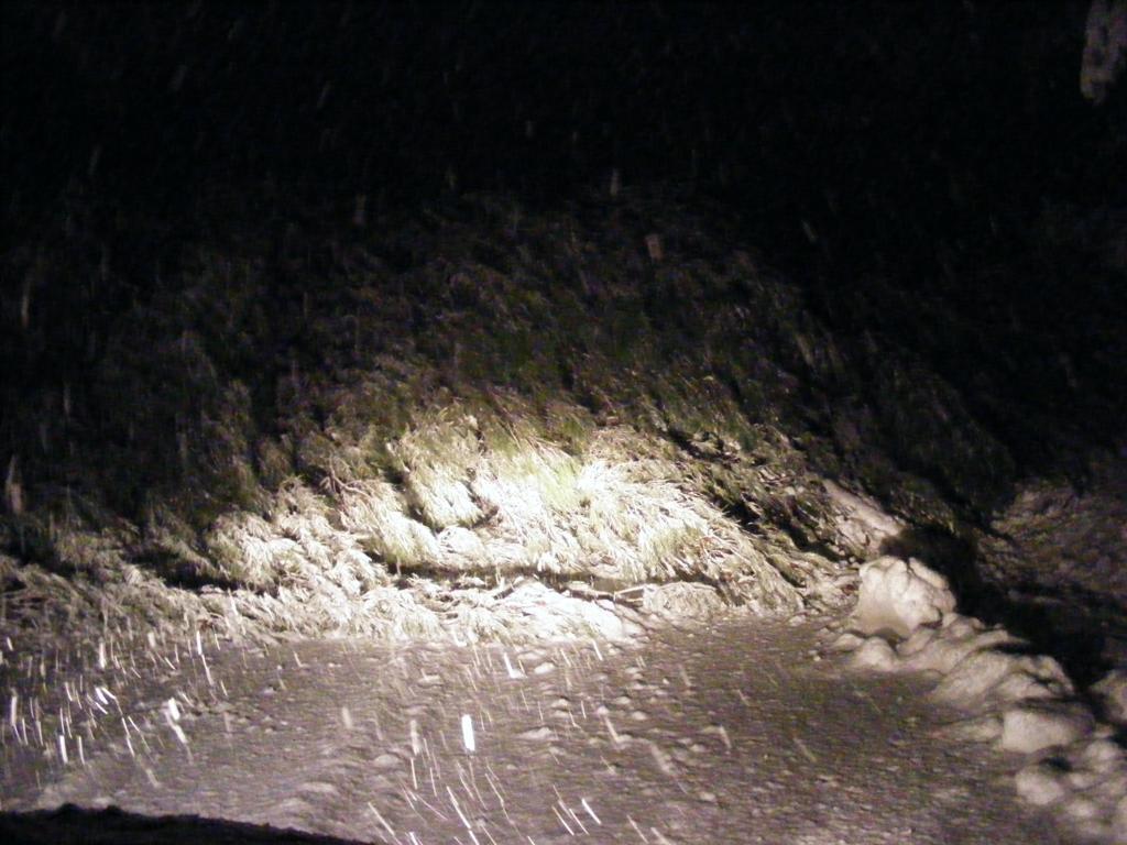 Foto della nevicata del 31-01-2010 Paolo61 con la collaborazione di Niko e Andrew183-dscf1003_1024x768.jpg