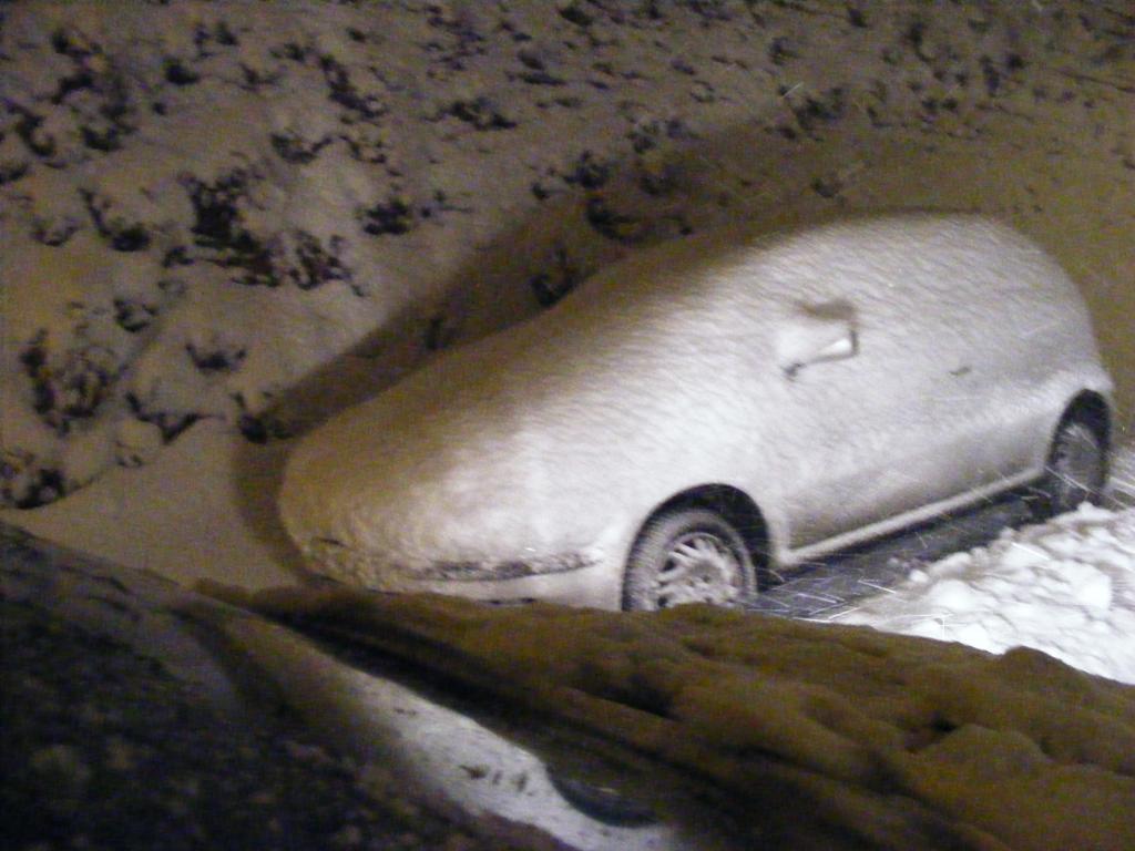 Foto della nevicata del 31-01-2010 Paolo61 con la collaborazione di Niko e Andrew183-dscf1009_1024x768.jpg