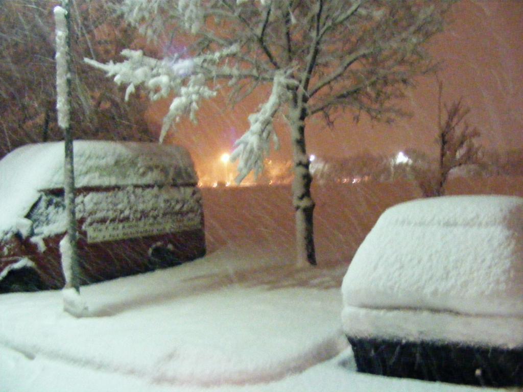 Foto della nevicata del 31-01-2010 Paolo61 con la collaborazione di Niko e Andrew183-dscf1034_1024x768.jpg