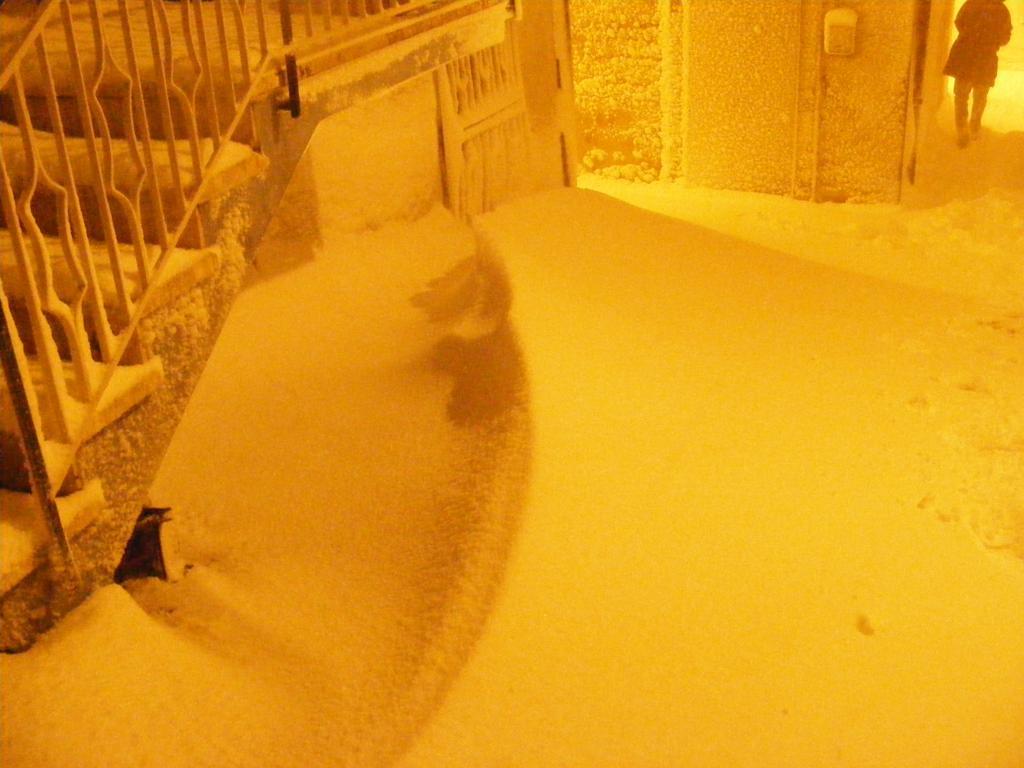 Foto della nevicata del 31-01-2010 Paolo61 con la collaborazione di Niko e Andrew183-dscf1061_1024x768.jpg