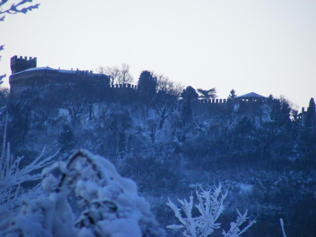 Foto della nevicata del 31-01-2010 Paolo61 con la collaborazione di Niko e Andrew183-dscf1075_1024x768.jpg