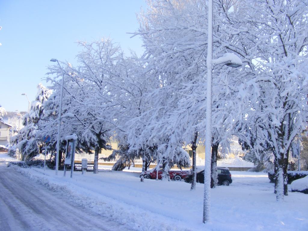 Foto della nevicata del 31-01-2010 Paolo61 con la collaborazione di Niko e Andrew183-dscf1090_1024x768.jpg