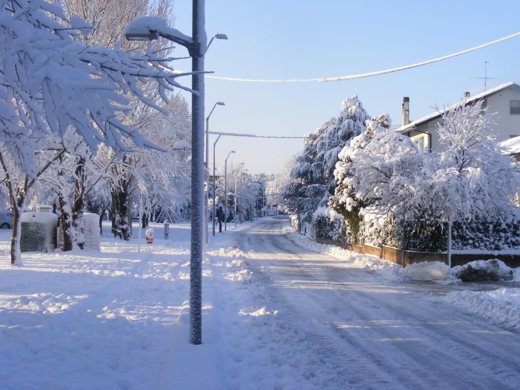 Foto della nevicata del 31-01-2010 Paolo61 con la collaborazione di Niko e Andrew183-dscf1095_1024x768.jpg
