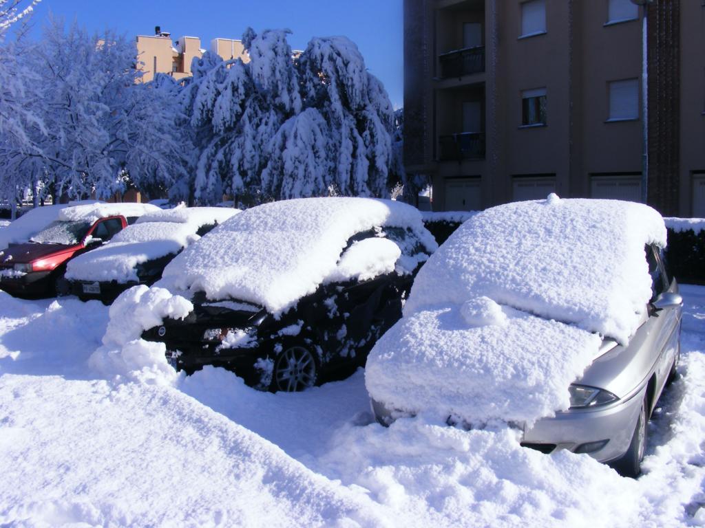 Foto della nevicata del 31-01-2010 Paolo61 con la collaborazione di Niko e Andrew183-dscf1132_1024x768.jpg