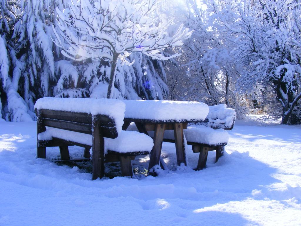 Foto della nevicata del 31-01-2010 Paolo61 con la collaborazione di Niko e Andrew183-dscf1133_1024x768.jpg