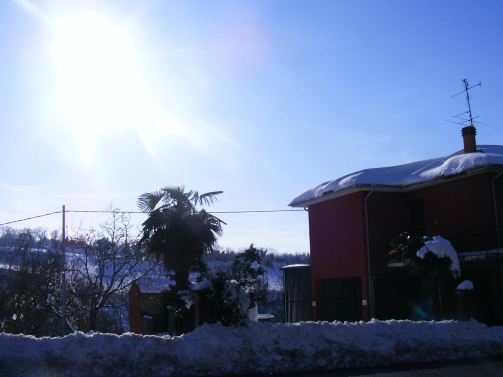 Foto della nevicata del 31-01-2010 Paolo61 con la collaborazione di Niko e Andrew183-dscf1165_1024x768.jpg