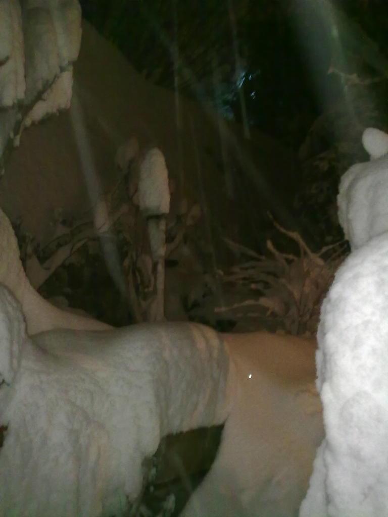 Volterra fotoreportage neve 9/10 marzo 2010..l'apoteosi nevosa!!-volterra-9-10-marzo-2010-sera-4-.jpg
