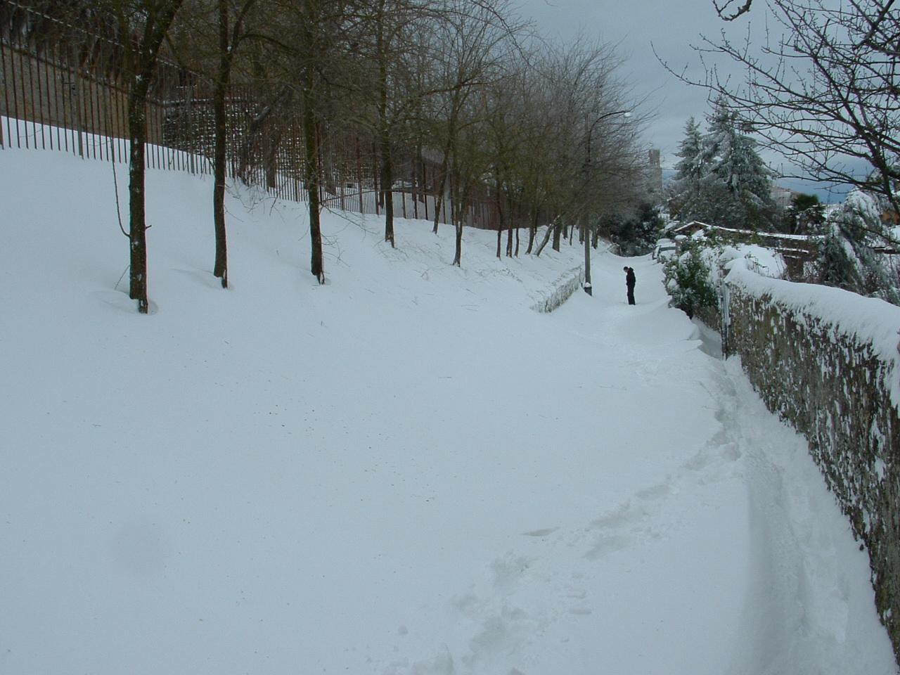 Volterra fotoreportage neve 9/10 marzo 2010..l'apoteosi nevosa!!-foto-mattina-volterra-10-marzo-2010-1-.jpg