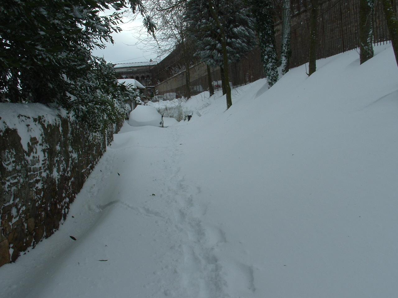 Volterra fotoreportage neve 9/10 marzo 2010..l'apoteosi nevosa!!-foto-mattina-volterra-10-marzo-2010-2-.jpg