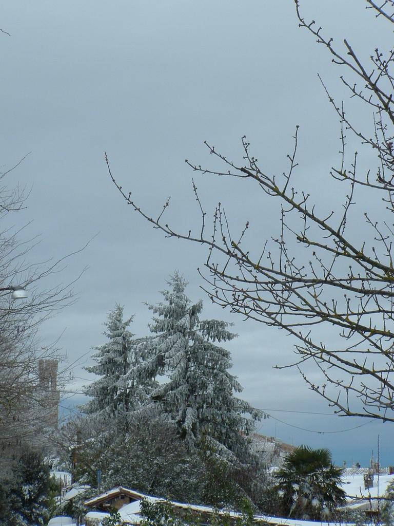 Volterra fotoreportage neve 9/10 marzo 2010..l'apoteosi nevosa!!-foto-mattina-volterra-10-marzo-2010-3-.jpg
