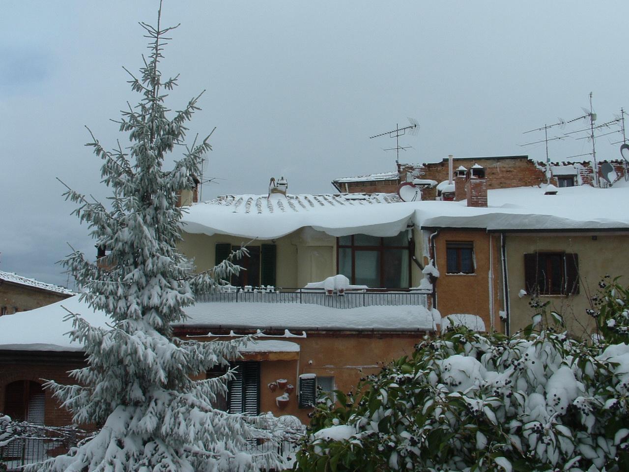 Volterra fotoreportage neve 9/10 marzo 2010..l'apoteosi nevosa!!-foto-mattina-volterra-10-marzo-2010-5-.jpg
