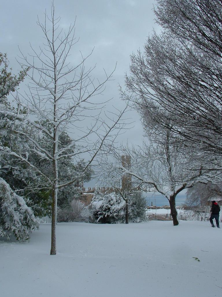 Volterra fotoreportage neve 9/10 marzo 2010..l'apoteosi nevosa!!-foto-mattina-volterra-10-marzo-2010-11-.jpg