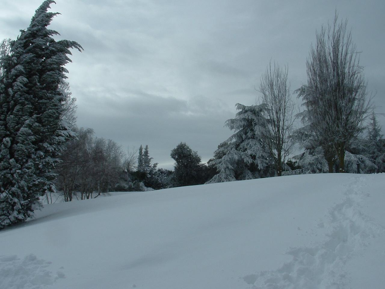 Volterra fotoreportage neve 9/10 marzo 2010..l'apoteosi nevosa!!-foto-mattina-volterra-10-marzo-2010-14-.jpg