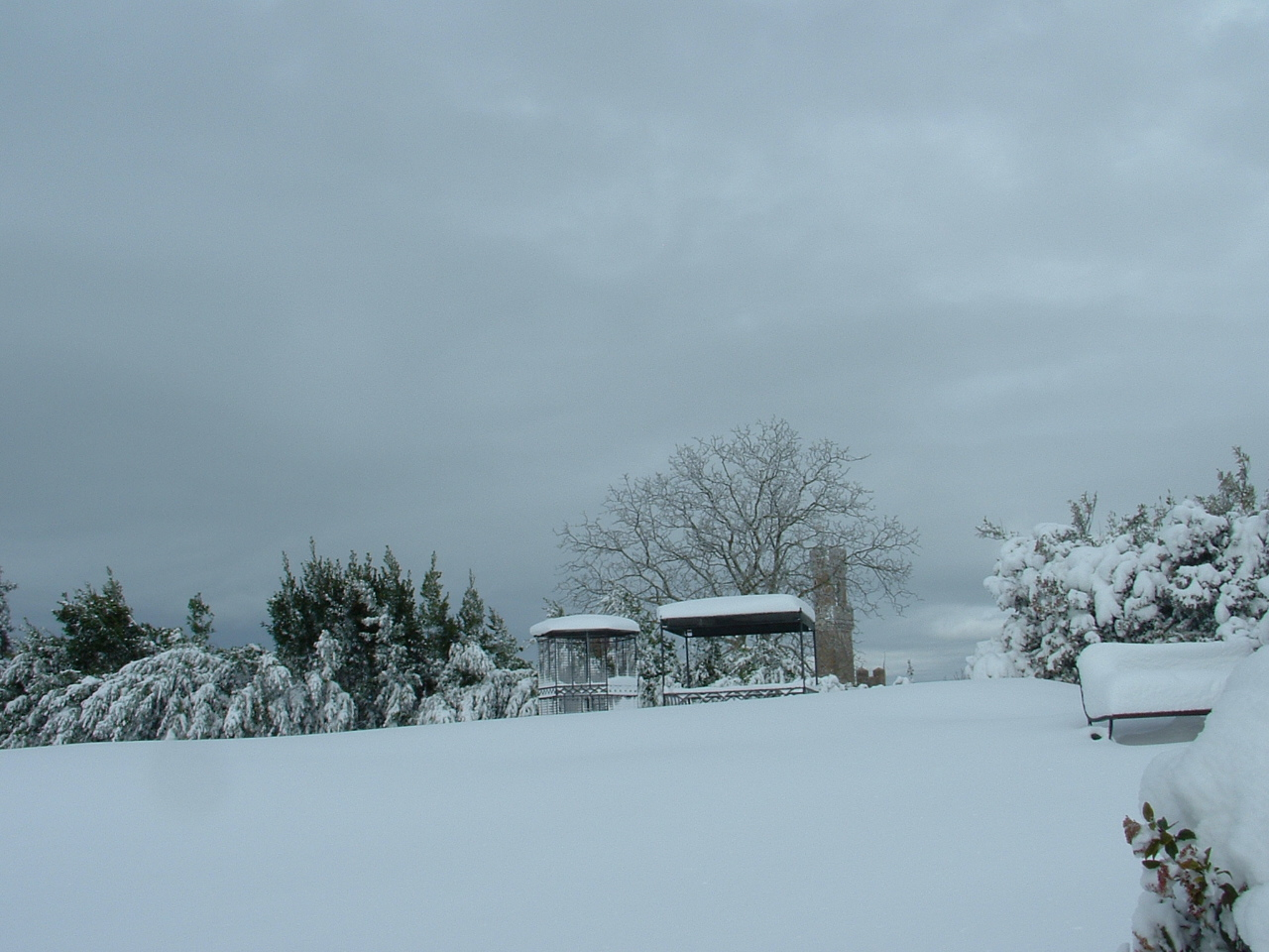 Volterra fotoreportage neve 9/10 marzo 2010..l'apoteosi nevosa!!-foto-mattina-volterra-10-marzo-2010-15-.jpg