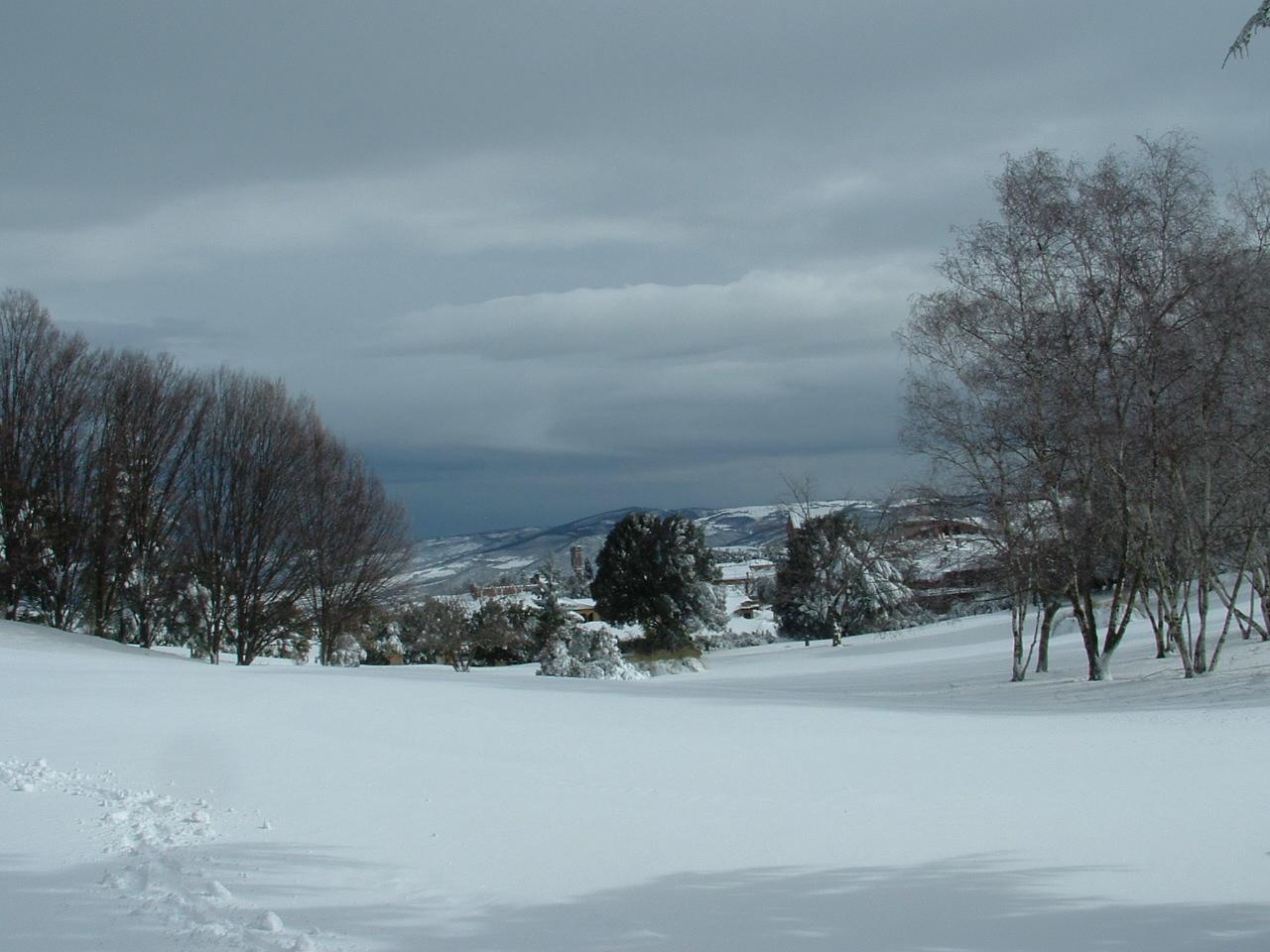 Volterra fotoreportage neve 9/10 marzo 2010..l'apoteosi nevosa!!-foto-mattina-volterra-10-marzo-2010-2-4-.jpg