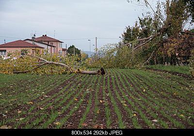 overshooting top+ Tromba d'aria in Veneto-img_7173.jpg