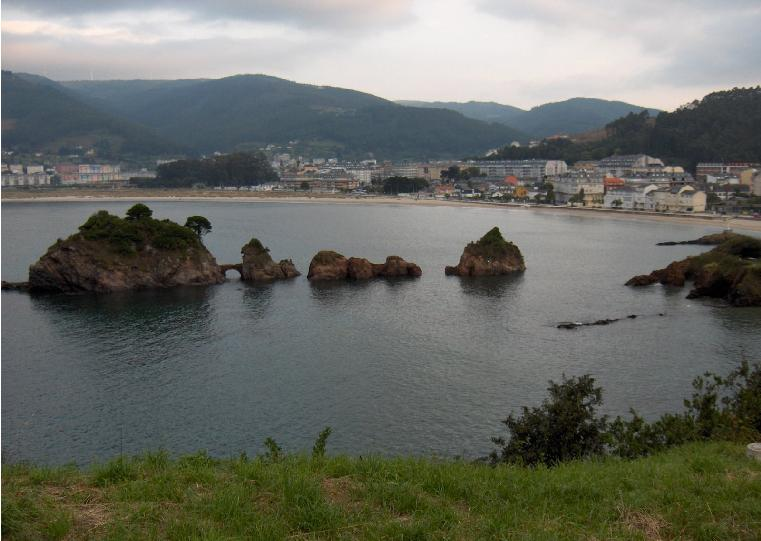 Reports from Spain-viveiro.jpg