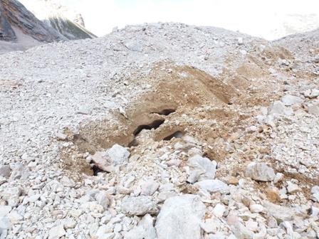 Ghiacciaio o Rock Glacier di Croda Rossa d'Ampezzo-p1000061.jpg
