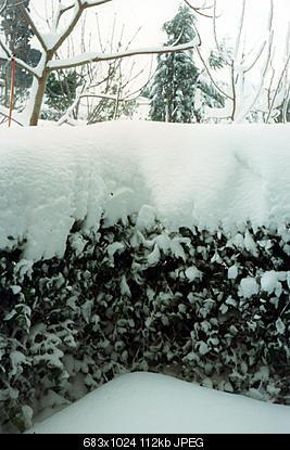 Ecco a voi tutte le nevicate di pesaro dalla stagione 1970-71 ad oggi!-titolo-1.jpg