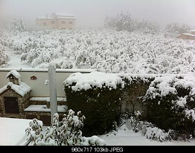 Nowcasting CAMPANIA - FEBBRAIO 2012! FORZA NEVE.-402160_3177944368459_1261118449_33315114_1056978560_n.jpg