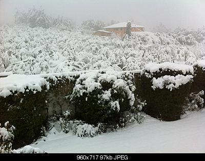 Nowcasting CAMPANIA - FEBBRAIO 2012! FORZA NEVE.-417989_3177957688792_1261118449_33315140_1387712929_n.jpg