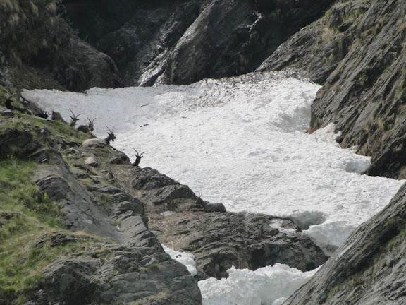 -021-lavori-cai-sentiero-x-valorga-19_5_2012.jpg