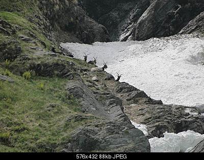 -023-lavori-cai-sentiero-x-valorga-19_5_2012.jpg