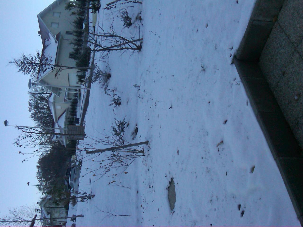 Nowcasting Vieugy-Annecy Alta Savoia - Alpi Francesi-img00553-20131203-0923.jpg