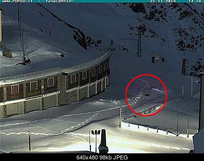 La presunta volpe dello stelvio ( tutto sullo stelvio )-20141121_1718_volpe_stelvio.jpg