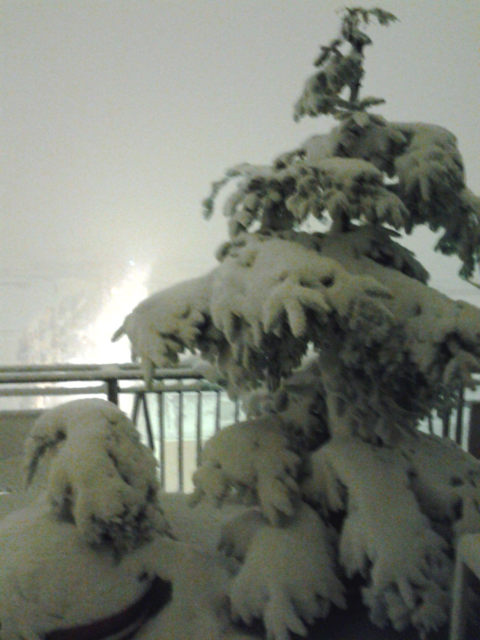 neve di questi giorni (colline adriatiche-Abruzzo)-foto3213.jpg